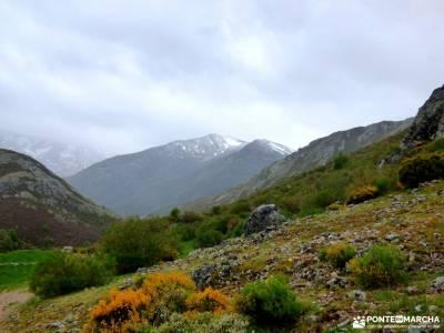 Montaña Palentina-Fuentes Carrionas; tiendas montaña madrid cañadas reales viajes a la palma tien